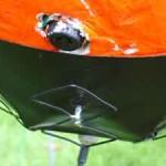 ballonvossenjacht2004_atvan